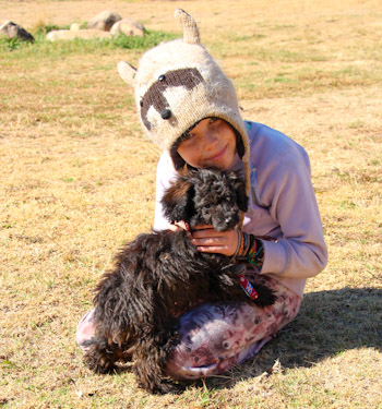 Brioni and a puppy, Avelon, northern NSW, July 2014