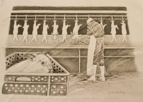 Drawing of a rabbit in a slaughterhouse, as photographed by Jo-Anne McArthur, Jo Frederiks, vegan artist, animal activist, using art to raise awareness of animal suffering and inspiring change to a cruelty-free lifestyle, August 2014