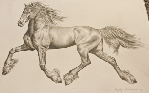 Picture of a horse, Jo Frederiks, vegan artist, animal activist, using art to raise awareness of animal suffering and inspiring change to a cruelty-free lifestyle, August 2014