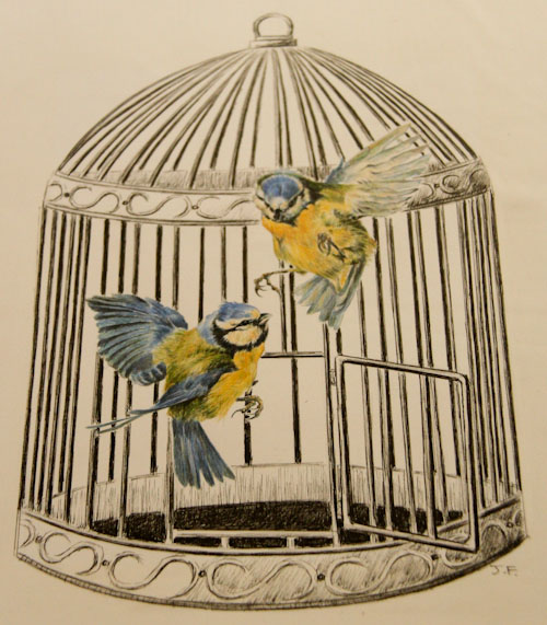 Birds escaping the cage, painting by Jo Frederiks, vegan artist, animal activist, using art to raise awareness of animal suffering and inspiring change to a cruelty-free lifestyle, August 2014