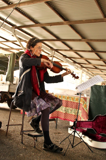 Busker at Lismore Organic Farmers Market, Lismore, northern NSW, August 2014