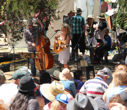Musicians at Cygnet Folk Festival, Tasmania, January 2015