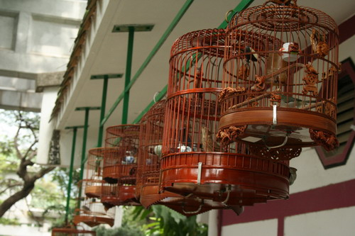 Bird Market, Hong Kong, October 2009