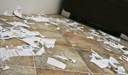 Paper cuttings on floor, October 2010