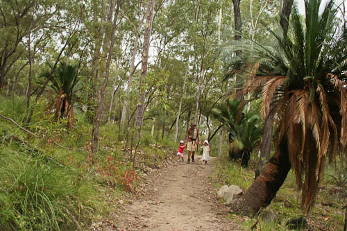 Walking through Carnarvon National Park, November 2010