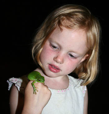 Brioni with green tree frog, November 2010