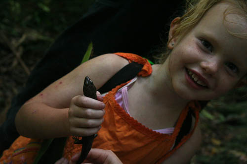 Holding a skink in Dorrigo National Park, January 2011