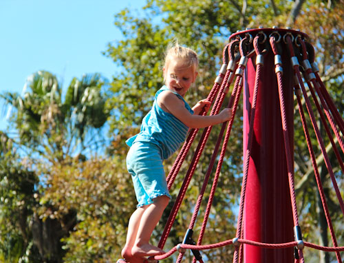 Calista on top of the spiderweb, September 2011