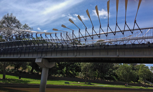 Bridge of oars at Parramatta, February 2012