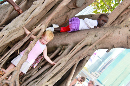 Delaney and Ayak playing on a tree, February 2012