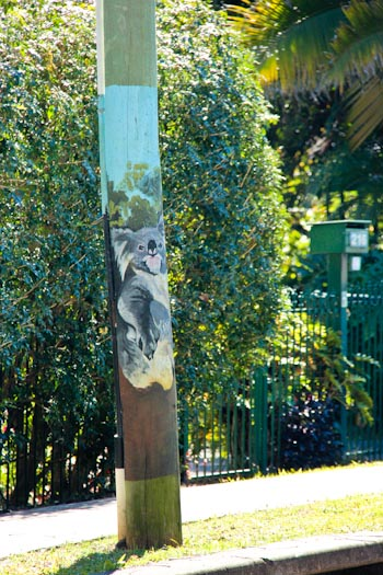 Koala painted on a telegraph pole, July 2012