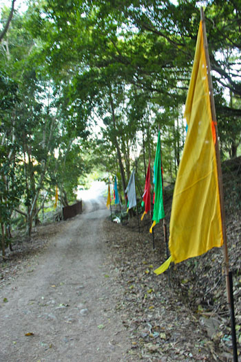Flags at Chenrezig Institute, August 2012