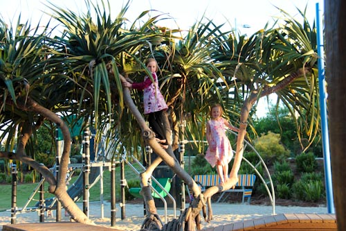 Aisha and Brioni in the tree, Broadwater Parklands, August 2012