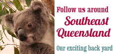 Follow us around southeast Queensland — our exciting back yard