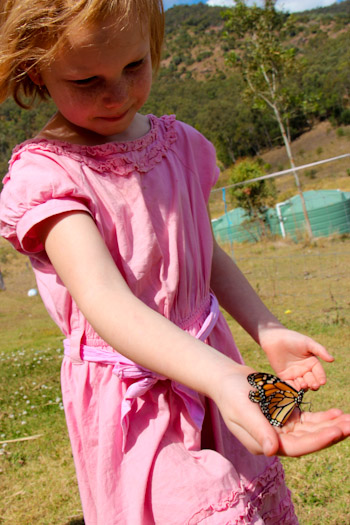 Brioni and her butterfly, September 2012