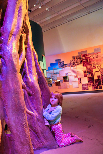 Calista at the Queensland Museum, September 2012
