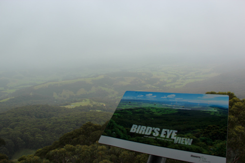 View on a cloudy day from the Illawarra Fly Tree Top Walk, December 2012