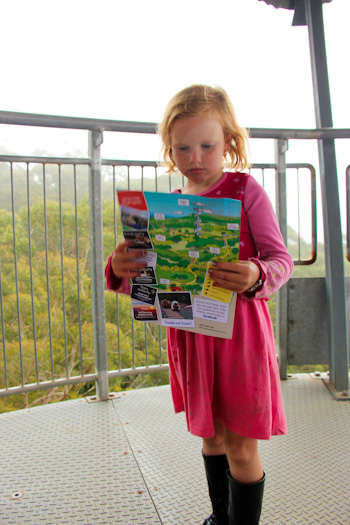 Brioni with a map at the Illawarra Fly Tree Top Walk, December 2012