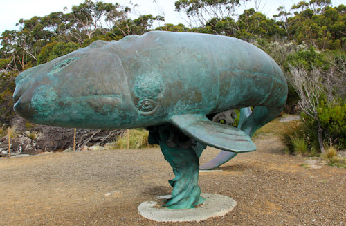 Bronze whale sculpture, Cockle Creek, Recherche Bay, Tasmania, January 2013