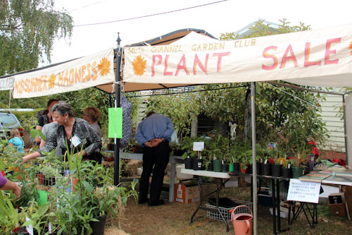 Garden Club stall, Middleton Country Fair, Tasmania, February 2013