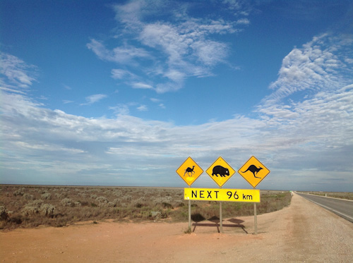 Camel, wombat and kangaroo sign on the Nullarbor, South Australia